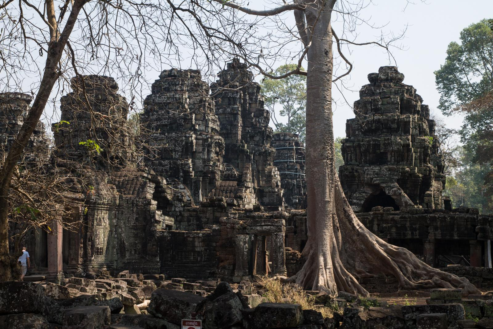 Temples of Angkor #3