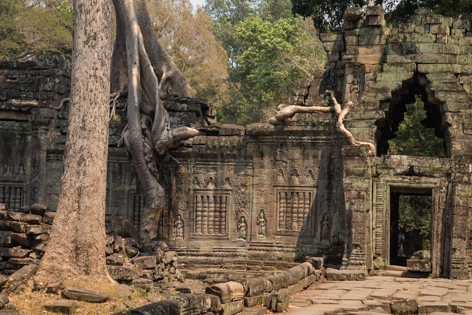 Temples of Angkor #4